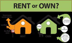 rent-vs-own for fluffy